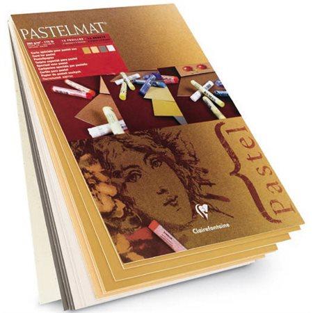"Papier Pastelmat, 18 X 24"", 4 teintes"