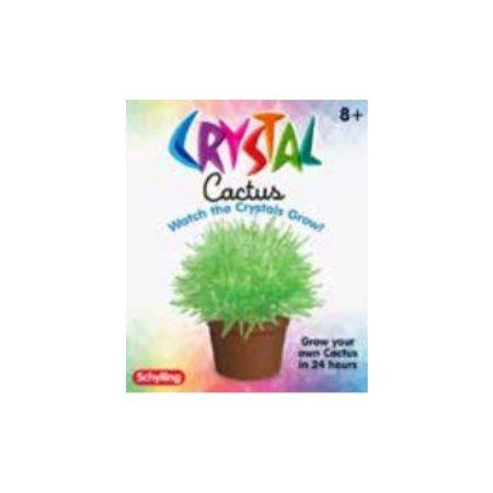 Cactus en cristal à faire pousser