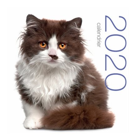 Chats: calendrier mural 2020